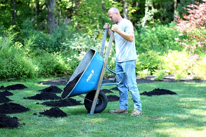 man dumping small pile of compost on green grass using blue wheelbarrow